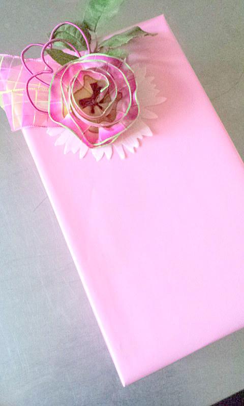 32 verpackung rosa 13.03.14 032