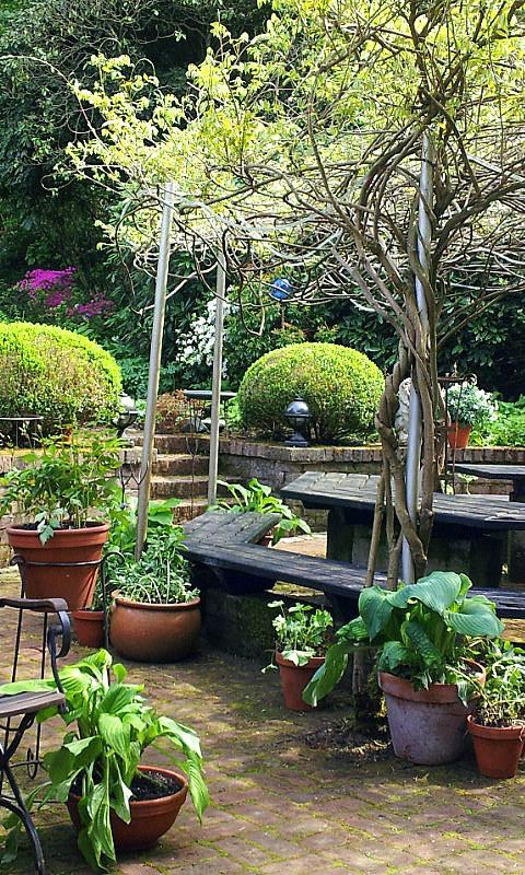 26.04.14 garden wpt 17