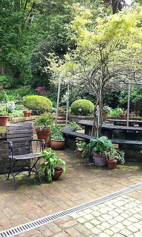 26.04.14 garden wpt 21
