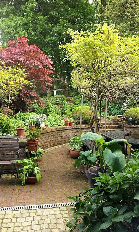 26.04.14 garden wpt 24