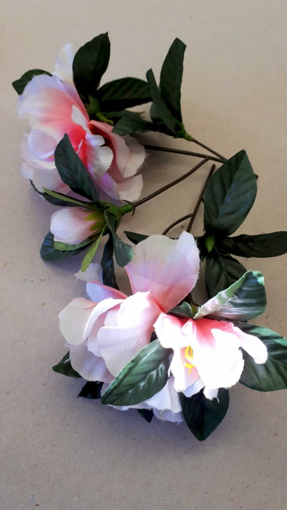07.01.18 Dose in rosa Kleid 5 BLOG