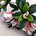 26.01.18 Rosenkerze rosa 4 BLOG