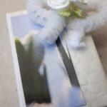 26.02.18 Proj.Snowdrops A-C 270 BLOG