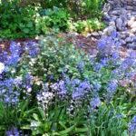 27.05.17 vor Off.Garten 25 BLOG FB IN